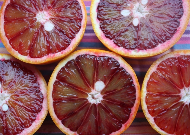 Blood oranges 005