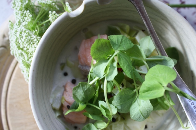 Salmon, fennel and parsley with coconut milk 039