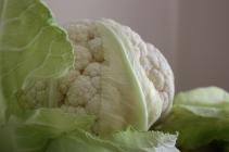 Cauliflower salad 043